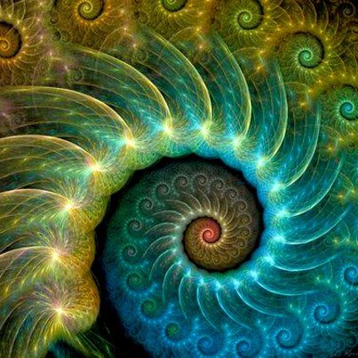 Fractal — Weight Loss Through Yoga, Jewel in the Lotus